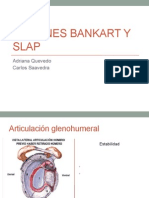 POP Bankart y SLAP