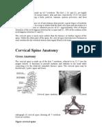 Cspine Anatomy