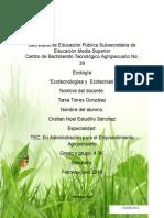 """""""Ecotecnologías Y Enotecnias Ejemplos """""""