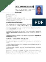 Sintesis Curricular Larbrizuela 2015