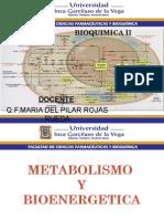Clase 1 Metabolismo2