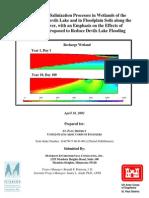 35saltmodeling.pdf