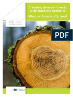 Creating Diverse Forests