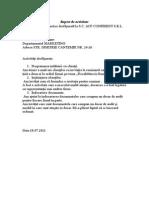 Raport de Activitate ZIUA NR[1]. 11