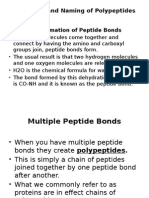 Naming Polypeptide Chains