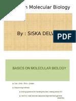 Basics on Molecular Biology b.ingg