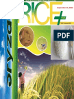 15 September,2015 Daily Exclusive ORYZA Rice E-Newsletter by Riceplus Magazine