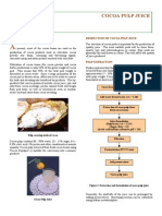 Cocoa Pulp by MCB