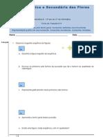 Ficha de Trabalho nº5 - sucessões - matB