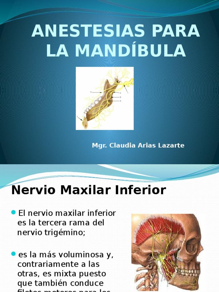 Anestesias Para La Mandíbula