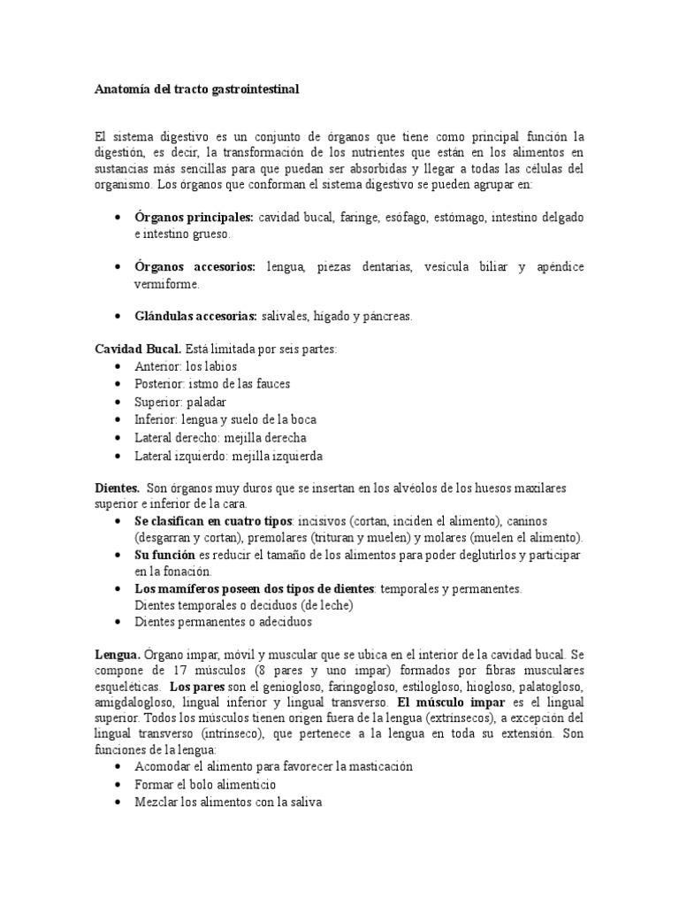 Anatomía y Fisiologia Del Tracto Gastrointestinal