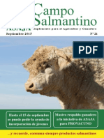 Campo Salmantino Septiembre 2015