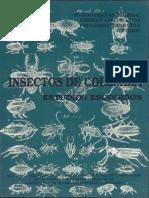 Insectos de Colombia