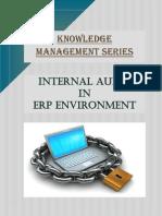 internal-audit-in-erp-environment.pdf
