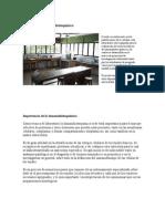 Laboratorio de Inmunohistoquímica2015