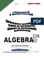algebra 5º secundaria