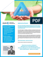 Flyer CI Agile Service Projects