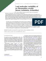 Morphological and molecular variability