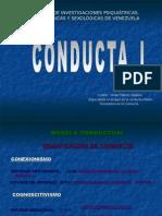 paradigmaoperanteunidad3-110609182417-phpapp02