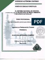 mosqueda_ramirez_olga_lidia_2013.pdf