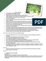 informationen zu stevia