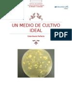 Informe Experimento Bacterias