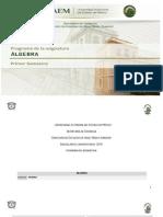Algebra2013 Final