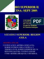 Miembro Superior 2 2009