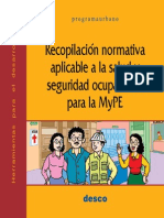 Reconormativa Pud VF MYPES