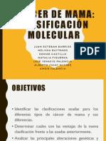 Clasificacion Molecular BRC