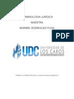 TERMINOLOGIA JURIDICA.docx