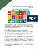 O mito dos Objetivos de Desenvolvimento Sustentável (ODS)