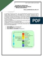 Informe Laboratorio CIV 219 PH Del Suelo