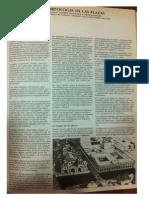 morfologia de plazas.pdf