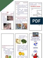 Leaflet Penkes Anemia