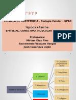 BIOLOGIA TEJIDOS BASICOS