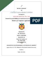 Content Management System Report