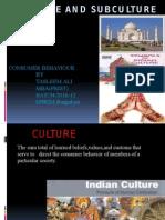 cultureandsubculture-111102150344-phpapp01