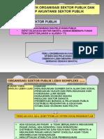 Karakteristik Organisasi Sektor Publik Dan Lingkup Akuntansi