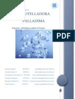 Evaluación de Proyectos - Informe 1 Del Proyecto - Agua Mineral