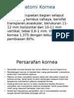 Anatomi,histo.fisio Kornea.pptx