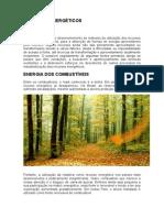 RECURSOS ENERGÉTICOS.doc