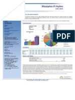 Maxiplan FI - Ações financeiras