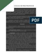Roteiro Para Cálculo de Pena Privativa de Liberdade de Patricia Rachid
