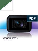Vegaspro90 Qsg Esp