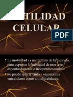 Motilidad Celular Corregido