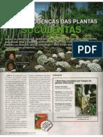Mundo Das Plantas e Jardinagem_N6_AGO2009