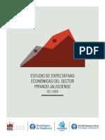 Expectativaseconomicas2s2015.pdf