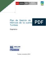 Diagnostico_cuencaTumbes