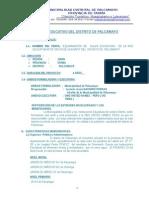 PERFIL EDUCATIVO DE PALCAMAYO FINAL.doc